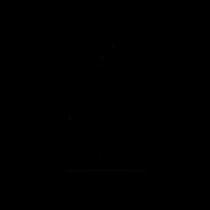 BIO_ICON_LAKE-SIDERS